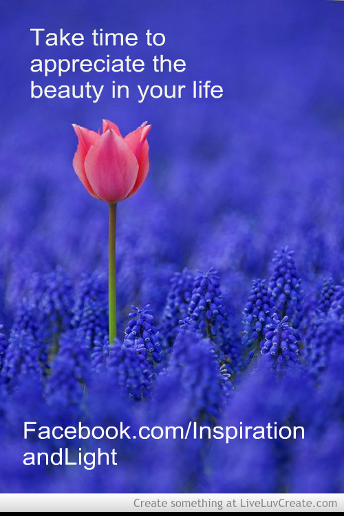 Beauty is all around you